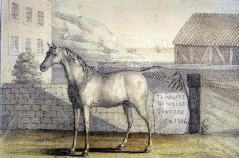 le_vizir_cheval_de_napoleon_c_paris_musee_de_larmee_dist_rmn-grand_palais_pascal_segrette